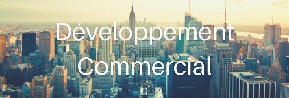 développement commercial btob