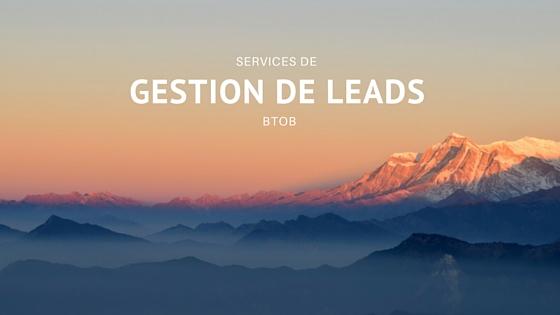services de gestion de leads BtoB