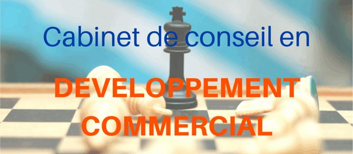 cabinet-conseil-developpement-commercial-lyon