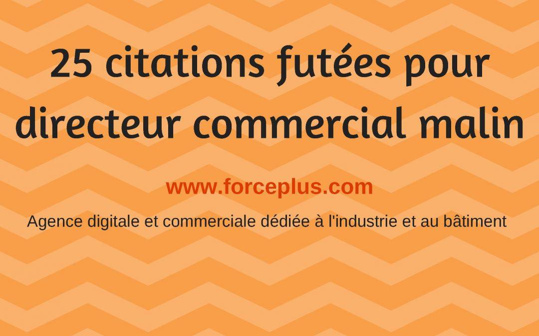 25 Citations Pour Directeur Commercial Malin