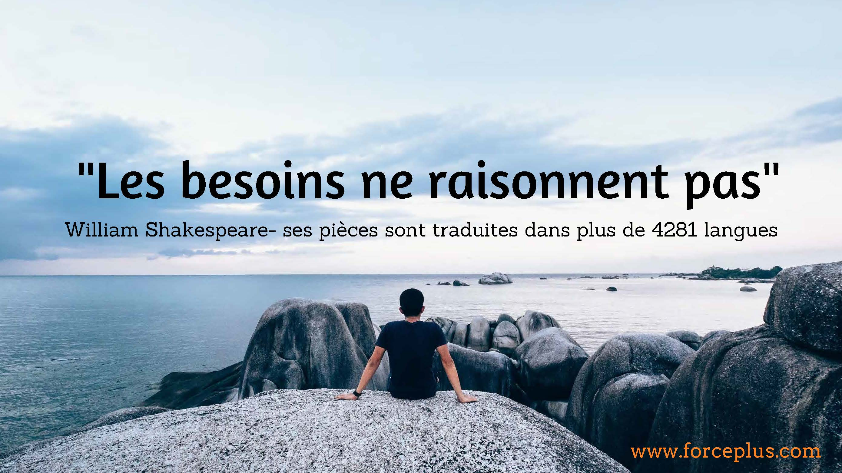 citations-directeur-commercial-malin23