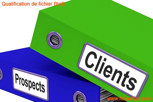 Qualification de fichier BtoB