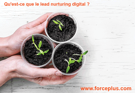 lead nurturing digital | FORCE-PLUS