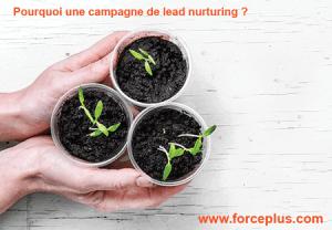 Pourquoi une campagne de lead nurturing   FORCE PLUS