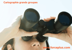 cartographie grands groupes | FORCE PLUS
