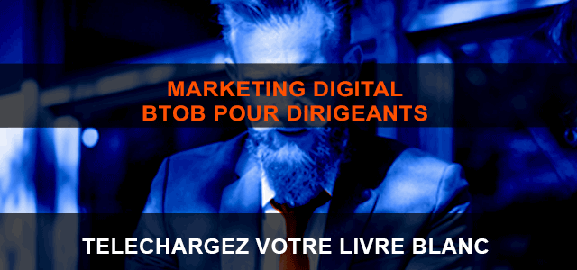 Livre Blanc Le Marketing Digital Btob Pour Dirigeants